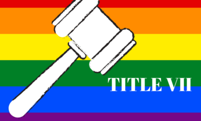 Title VII, rainbow flag and gavel